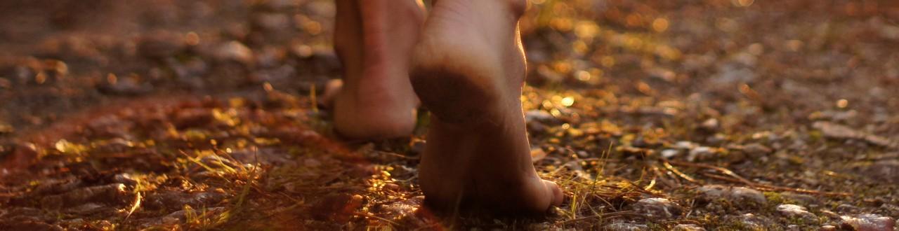 Environmental Footprint